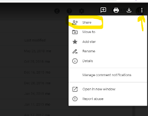 Sharing a Google Drive File in a Moodle Forum or Online